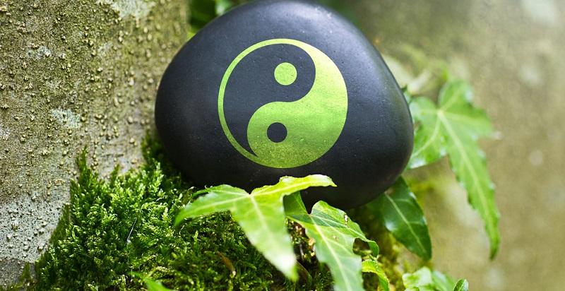 Von großer Bedeutung ist dabei beispielsweise die Lehre von Yin und Yang. Yin steht für das Qi, das das Wasser verbreitet und symbolisiert die Ruhe. Yang hingegen bezieht sich auf das Qi von Bergen und Straßen und steht im übertragenen Sinn für Aktivität und für Leistung.