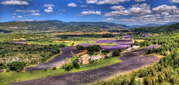 Urlaub am Mont Ventoux: mit der Familie die Provence genießen