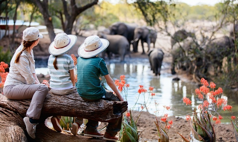 In Südafrika grassieren immer noch Krankheiten, die in Europa nahezu ausgerottet sind.  (Foto: Shutterstock-BlueOrange Studio )