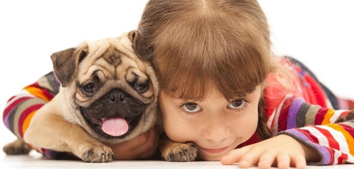 Welches Haustier: Welches Haustier in welchem Alter?
