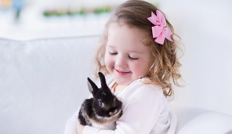 """Bei der Frage danach, welches Haustier sich fürs Kind am besten eignet, kommt wohl den meisten Eltern auch erst einmal eines der """"klassischen"""" Nagetiere ins Gedächtnis. Also das Kaninchen, der Goldhamster oder das Meerschweinchen. (#05)"""