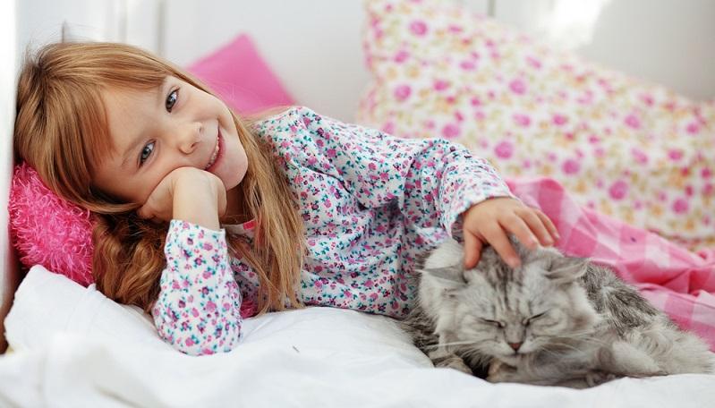 Die Katze ist ein Klassiker unter den Haustieren, die gerade auch bei Kindern sehr beliebt sind. (#03)