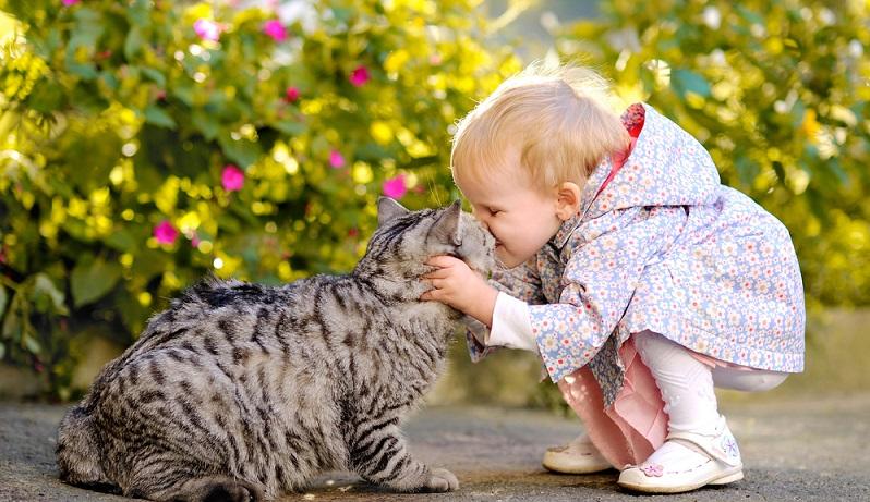 Nicht zu vergessen, wirken Tiere bei Kindern oft auch als Seelentröster und geben ihnen Halt in schwierigen bzw. traurigen Zeiten. Ein Haustier kann sich fürs Kind damit durchaus zu einem echten Seelentröster entwickeln. (#01)