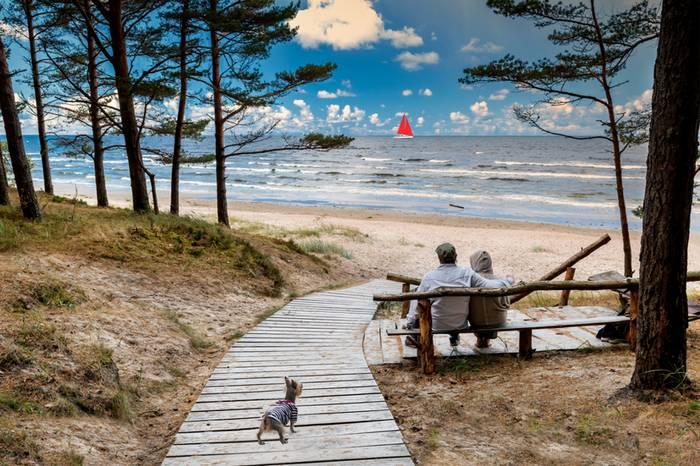 Die Ostsee bietet viele schöne Strände für den Urlaub mit dem Vierbeiner. (Foto: shutterstock - Sergei25)